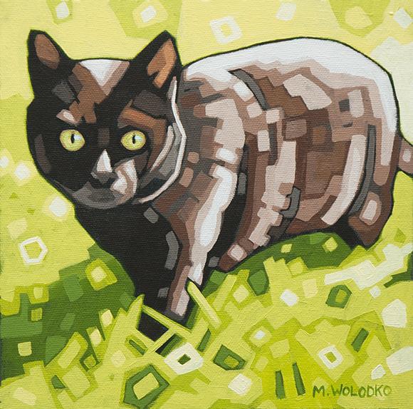 """Black Cat 8""""x8"""""""