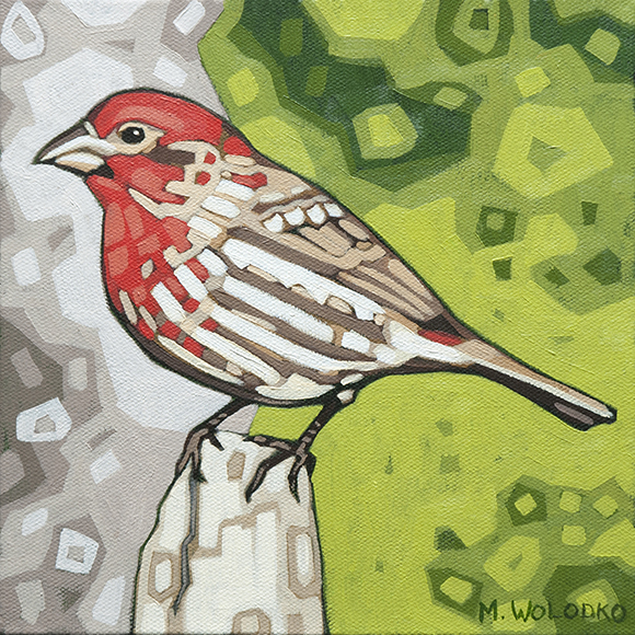 """House-Finch 8""""x8"""" (sold)"""
