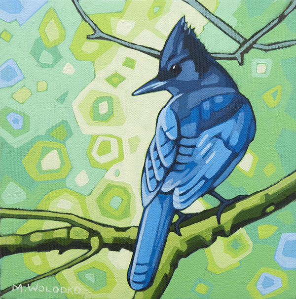 """Stellers Jay 8""""x8"""" (sold)"""
