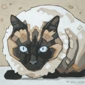"""Siamese Cat 8""""x8"""""""