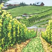 """Summerland Vineyard 18"""" x 24"""""""